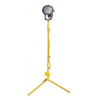 Single Head Floodlight